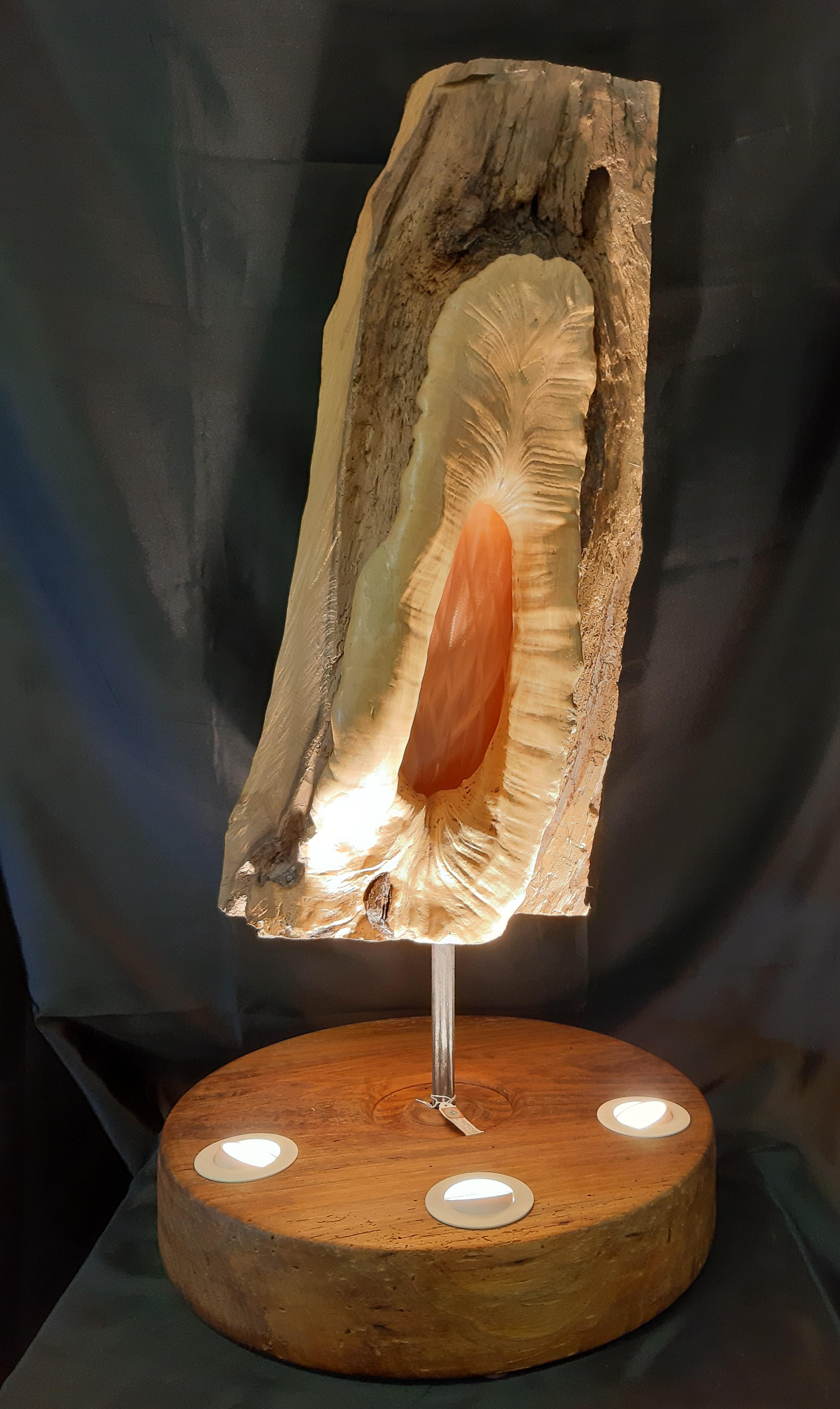 lampe unique, création bois cuivre, lampe nature